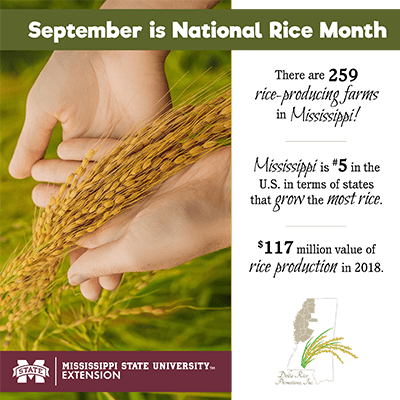 September is National Rice Month graphic