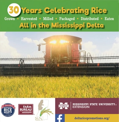30 Years Celebrating Rice graphic
