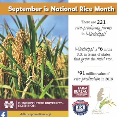 September National Rice Month graphic